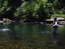Greg Seaton Fly Fishing below Greers Ferry Dam Little Red River