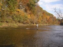 Greg Seaton Fly Fishing Little Red River Trout Guide Heber Springs Arkansas